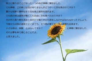 この空を.jpg